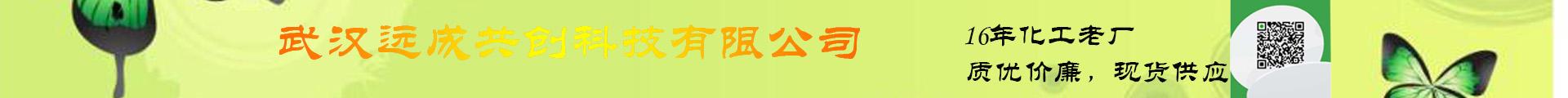 武漢遠成共創科技有限公司