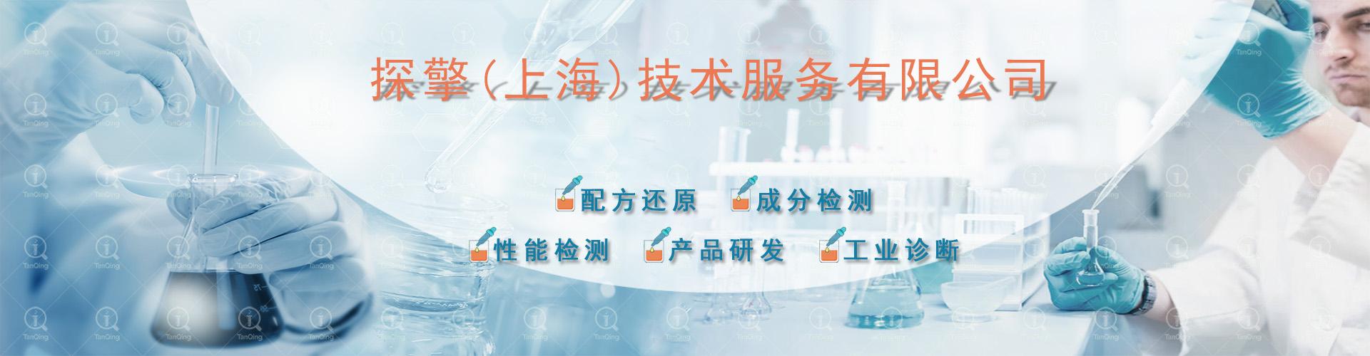 探擎(上海)技术服务有限公司