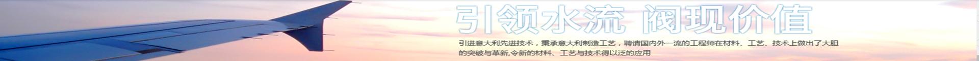 上海弗雷西閥門有限公司