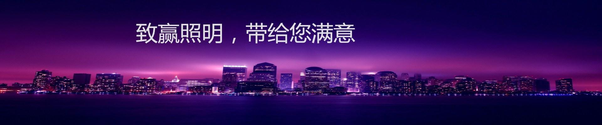 深圳市致赢发展科技有限公司