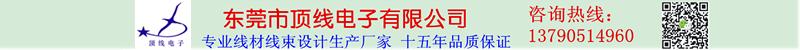 東莞市頂線電子有限公司